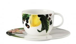 Rosenthal Brillance Les fruits du Jardin: Espressotasse 2-tlg. - 0,08 ltr. / UT = 12 cm